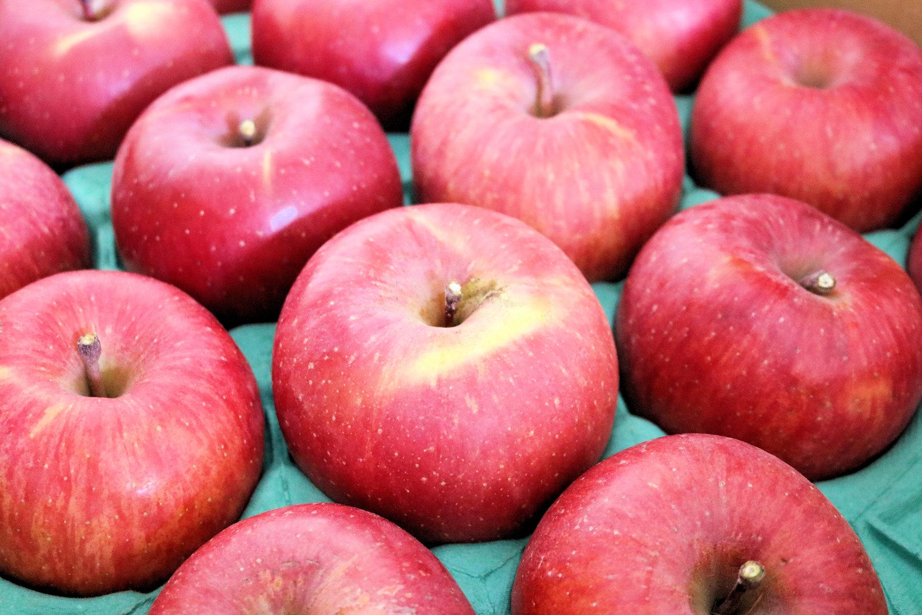 鍋田農園りんご